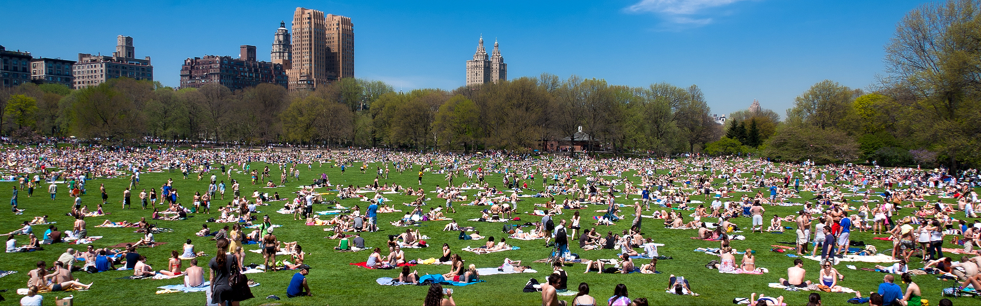 http://livingfreenyc.com/wp-content/uploads/2016/06/Central-Park.jpg